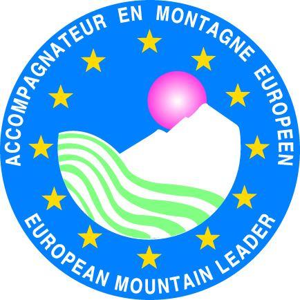 Logo aem